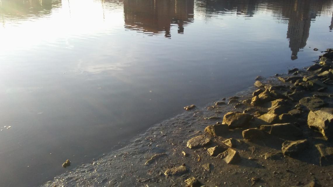 pvd_river_shore